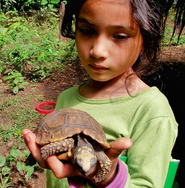 Niña cargando tortuga de patas amarillas